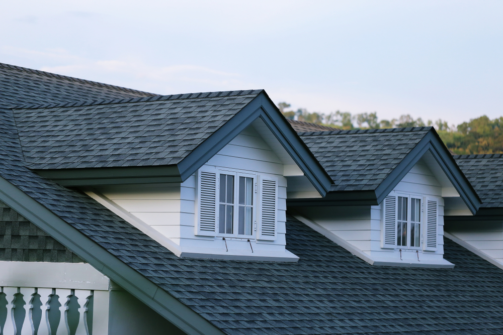 Detail image of new Delaware County, PA Roof shingle
