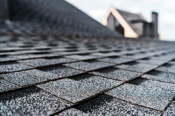 Detail image of new Garnet Valley, PA Roof shingle